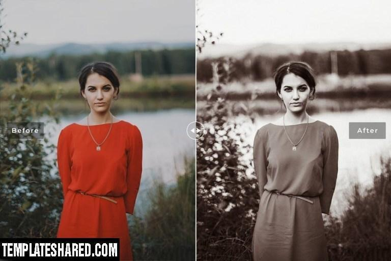Albumen Mobile Desktop Lightroom Presets 5